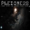 Pleione-28
