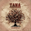 tana-the-pocket-philarmonic_springtime-ep